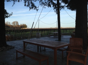 Dusk at Bogle Vineyards