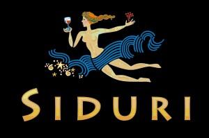 Siduri-logo-color-300x199