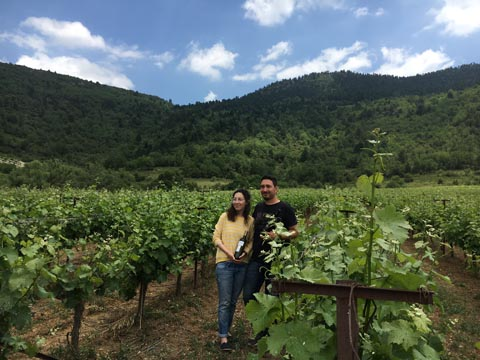 D and E in the vineyard